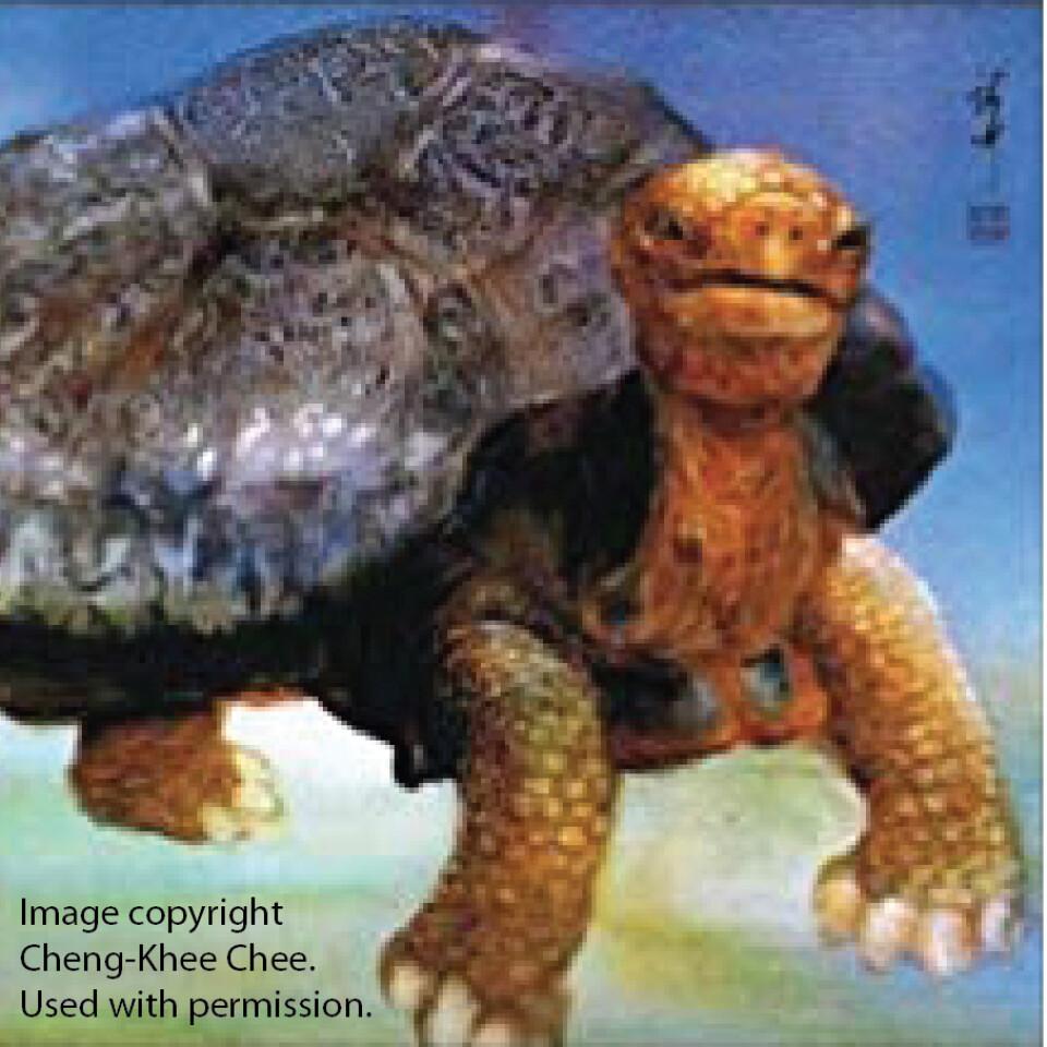 """Old Turtle"" Choral Presentation"